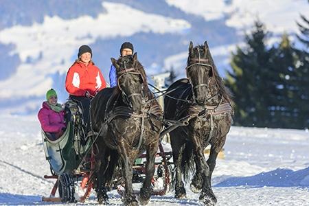 pferdekutschenfahrt winter